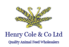Henry cole & co